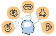 استفاده از حواس پنجگانه در بازاریابی و جذب مشتری